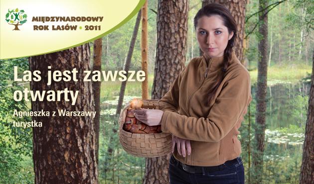 To hasło stanie się już niebawem nieaktualne. Fot: lasy.gov.pl