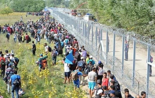 Ogrodzenie na granicy Węgier i Serbii
