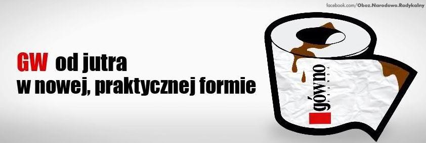 gowno_wyborcze
