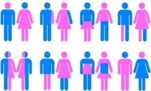 genders2